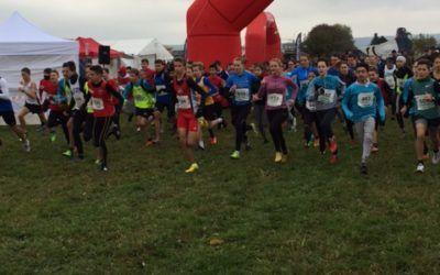 Crosslauf in Huchenfeld
