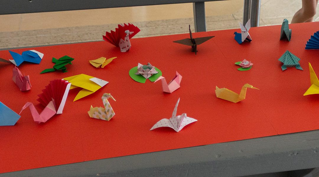 "Projekt ""Origami"""